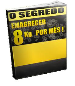 blog emagrecimento ebook gratis 8 segredos de perder 8 kg em um mes