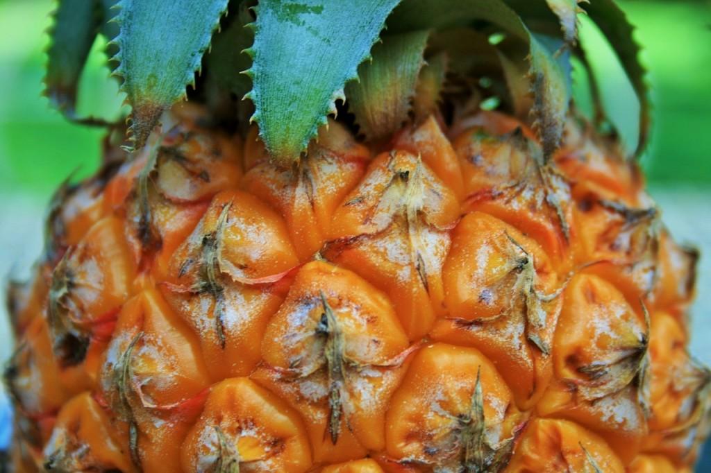 dieta-do-abacaxi-como-funciona-foto2